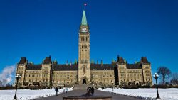 Industry offers mixed reviews of this year's federal budget