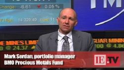 Portfolio manager: Opportunities in gold equities