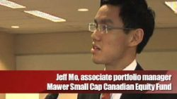 Small cap manager on Home Capital, Constellation, Stantec