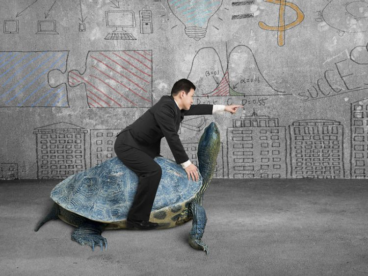 business man riding a tortoise pointing with finger