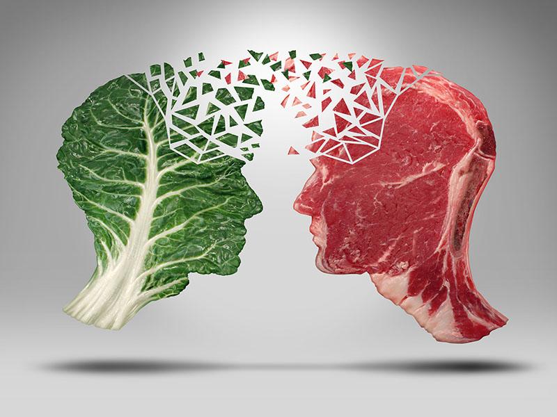 Meat vs vegatables concept