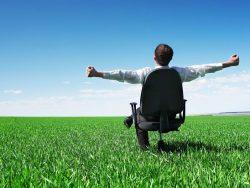 businessman sitting on chair in green field