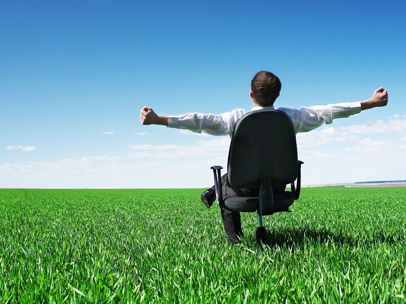 businessman sitting on chair in green field