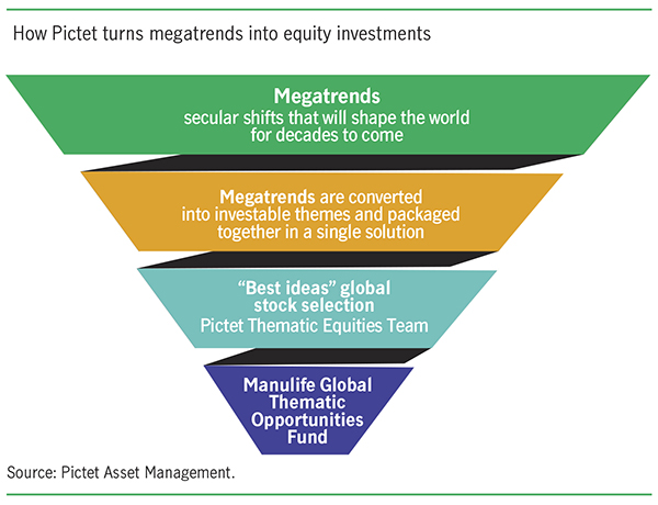 Pitet pyramid to show how megatrends turns into equity