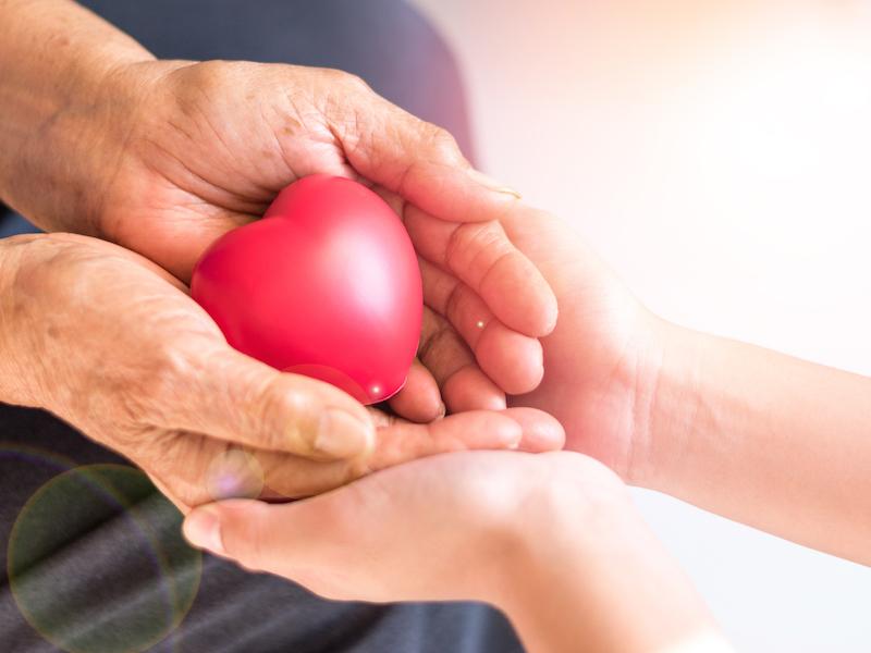 Caregiver, carer hand holding elder hand woman in hospice care. Philanthropy kindness to disabled concept.Public Service Recognition Week (Caregiver, carer hand holding elder hand woman in hospice care. Philanthropy kindness to disabled concept.Public