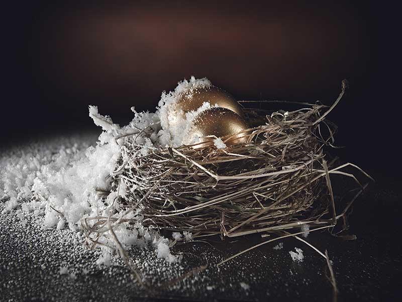 frozen nest egg