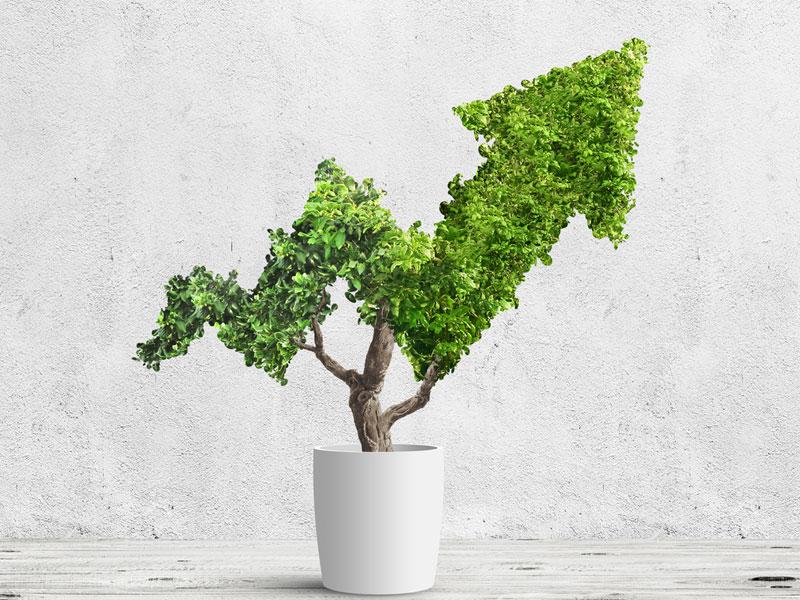 ESG growth