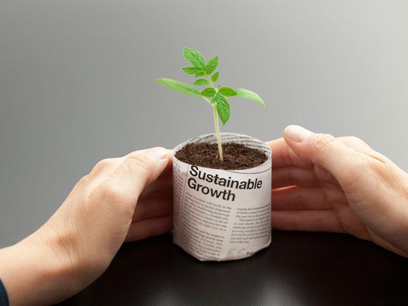 ESG sustainable growth